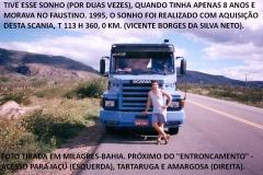 SCANIAS - TOP LINE - 1995 (10)